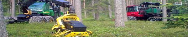 Metsäkonealan Tes